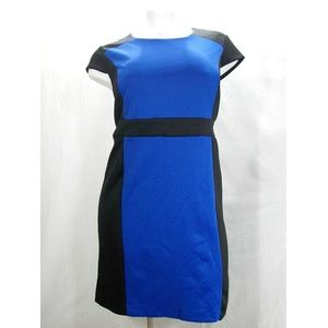 Covington Scuba Knit Colorblock Sheath Dress 20W